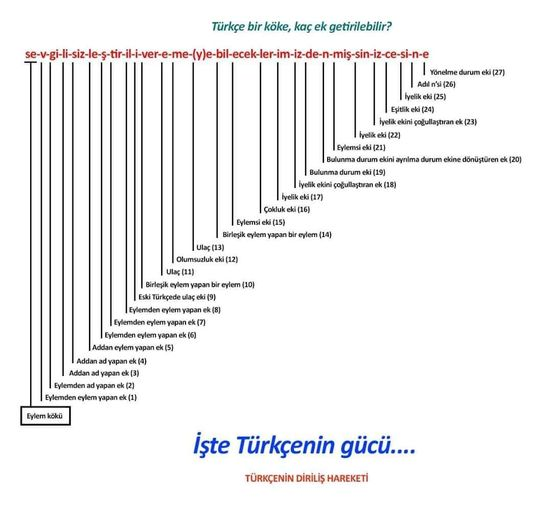 Türkçe ve Matematik İlişkisi