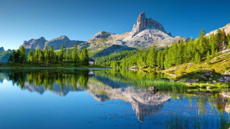 Alp Dağları Tarihi